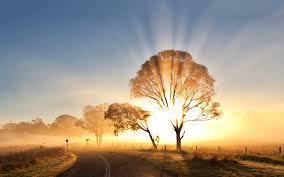 sunriselovely