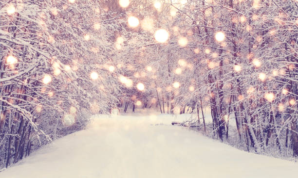fairylightwinter1